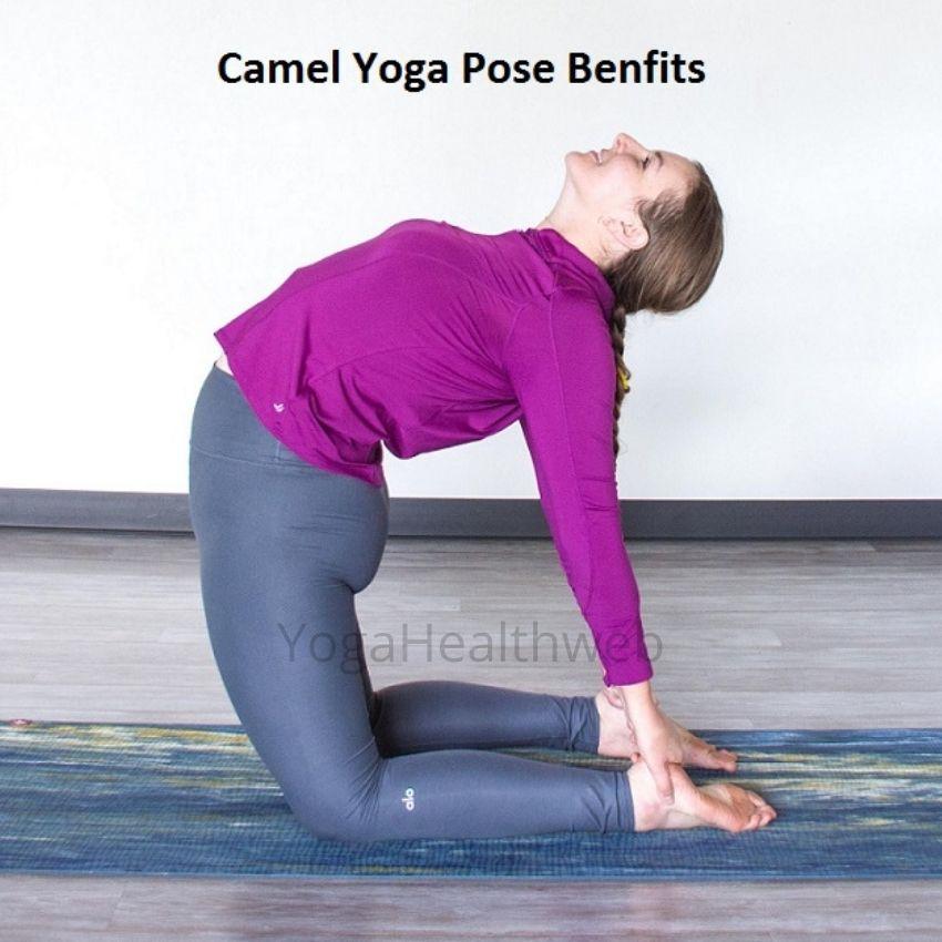 camel yoga pose